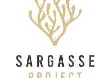sargasse project logo